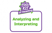 Analyzing and Interpreting