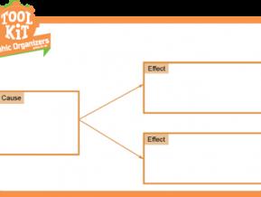 Cause-Effect Organizer